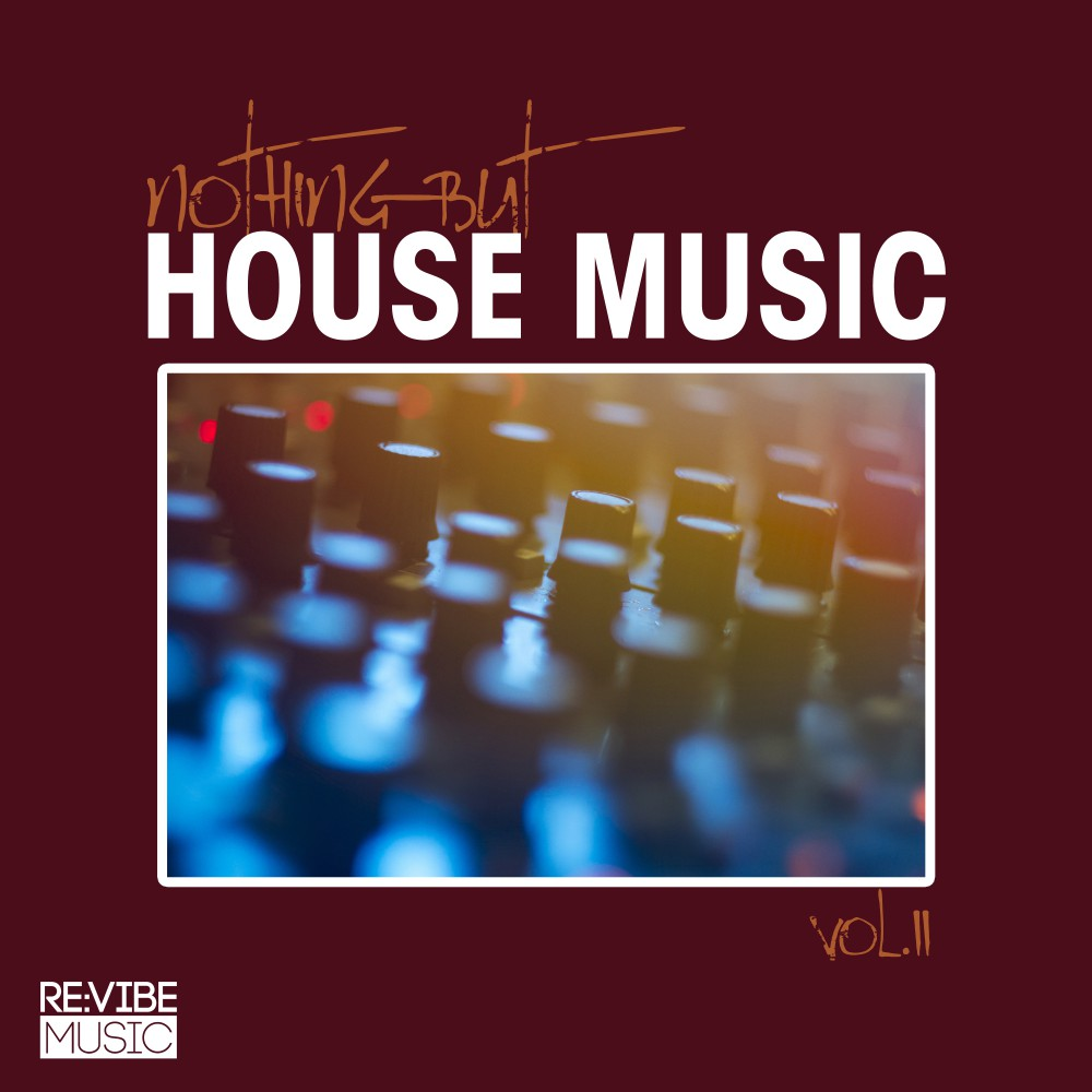 Va nothing but house music vol 11 rvmcomp474a web 2017 for House music facts